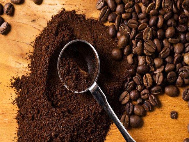 Bã cà phê giúp ngăn ngừa sự phát triển của muỗi